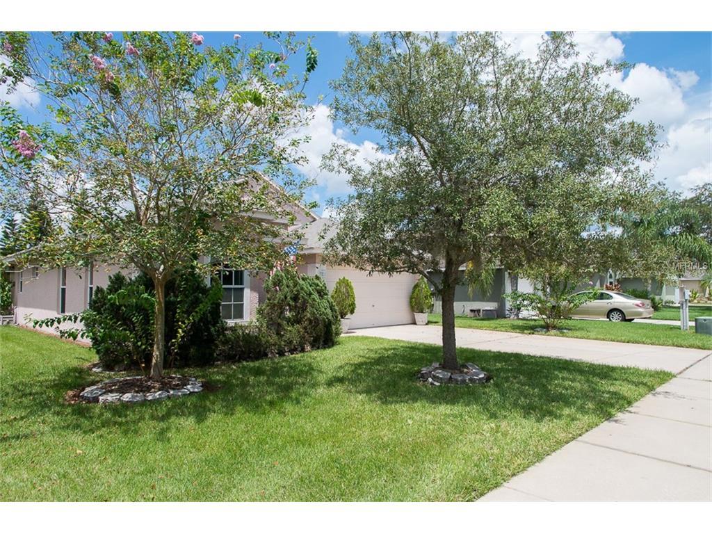 377 Tavernier Circle, Oldsmar, FL 34677