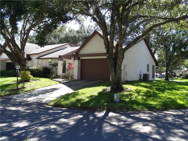 1384 Pheasant Creek Dr, Palm Harbor, FL 34684