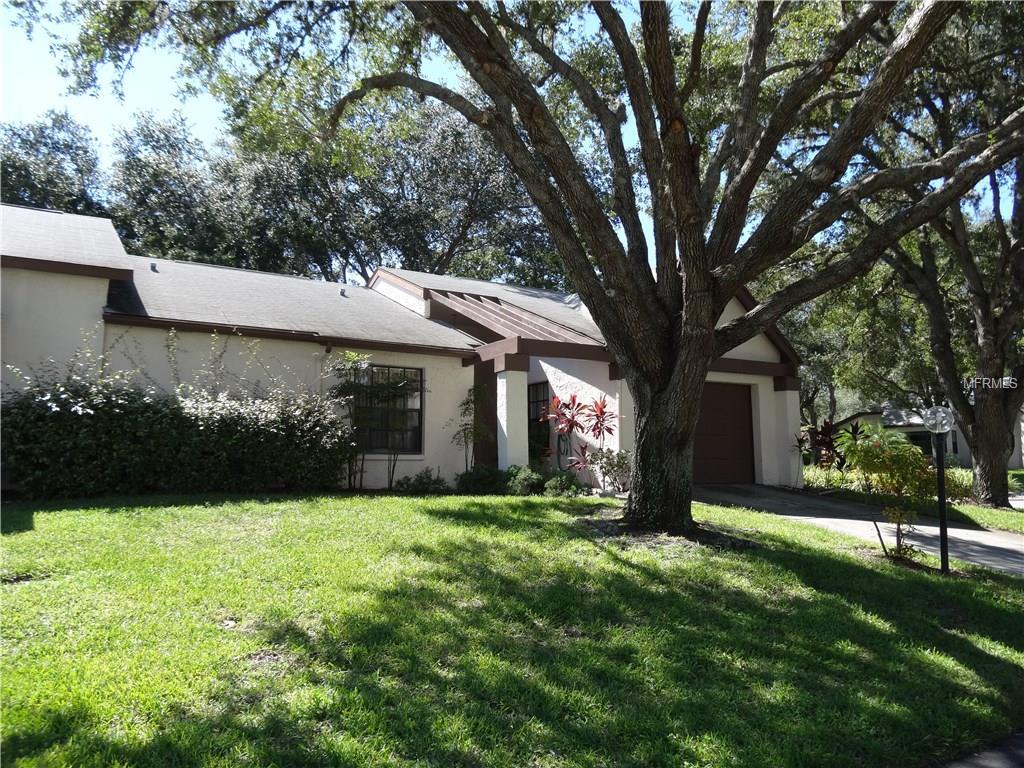 1384 Pheasant Creek Drive, Palm Harbor, FL 34684