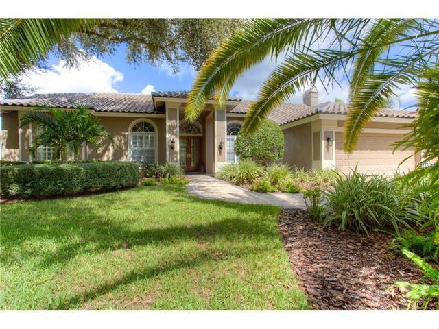 3877 Executive Dr, Palm Harbor, FL 34685