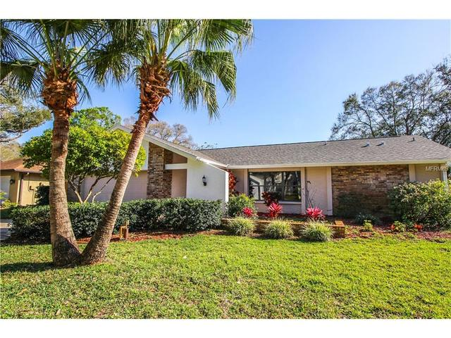 394 Lakeview Ter, Palm Harbor, FL 34683