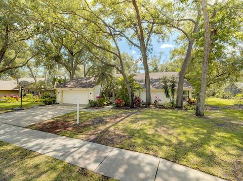 Rainbow Farms Safety Harbor Real Estate | Homes for Sale in ... on