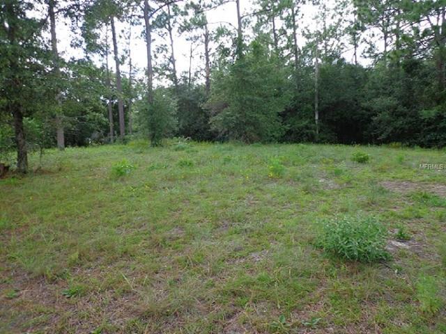 1730 Timber Oaks Ct, Deland, FL 32724