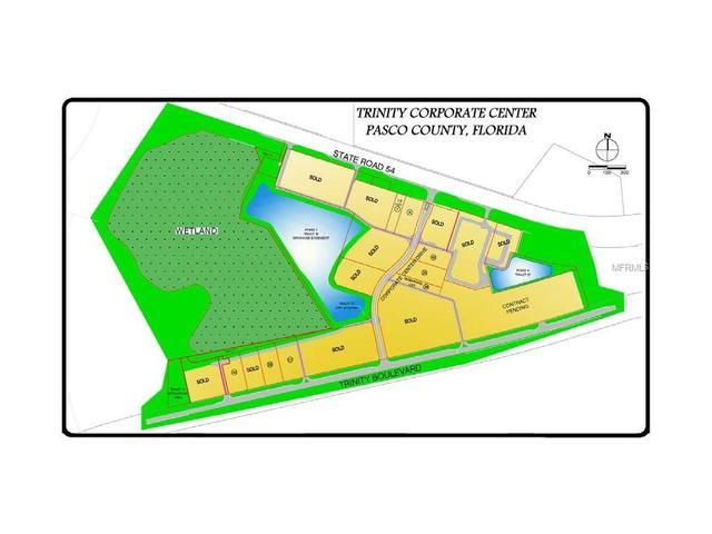 14 Trinity, Odessa, FL 33556