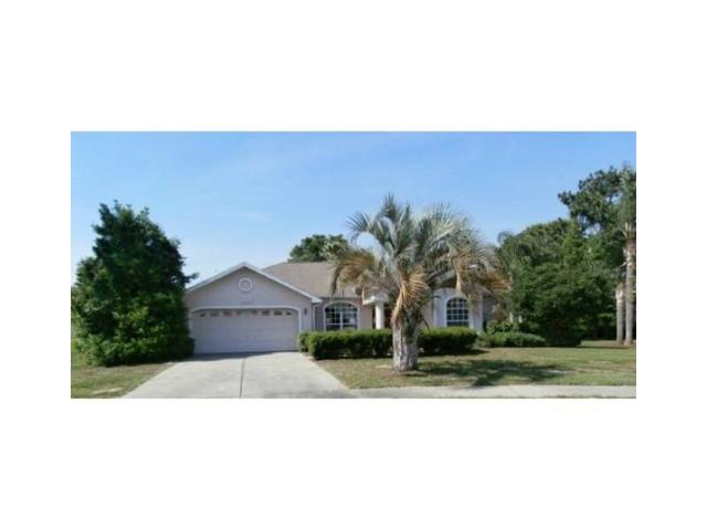 14207 Carlisle Dr, Spring Hill, FL