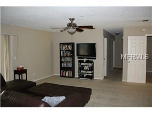 8240 Fishhawk Avenue, New Port Richey, FL 34653