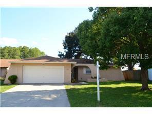 8240 Fishhawk Ave, New Port Richey, FL 34653