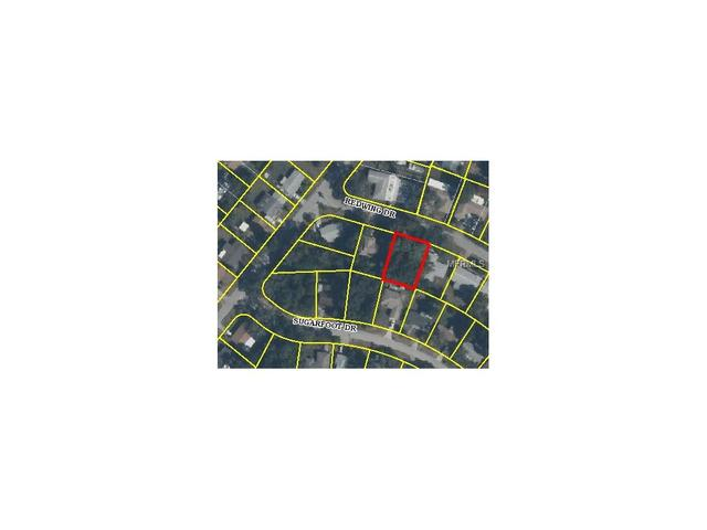 Redwing Drive, Spring Hill, FL 34606