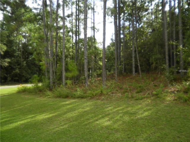 9066 N Akola Way, Citrus Springs, FL 34434
