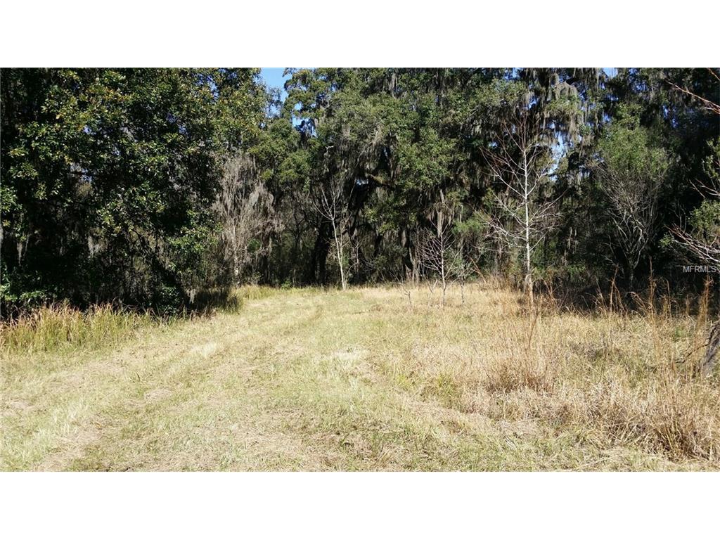 0 Rain Forest Road, Brooksville, FL 34601