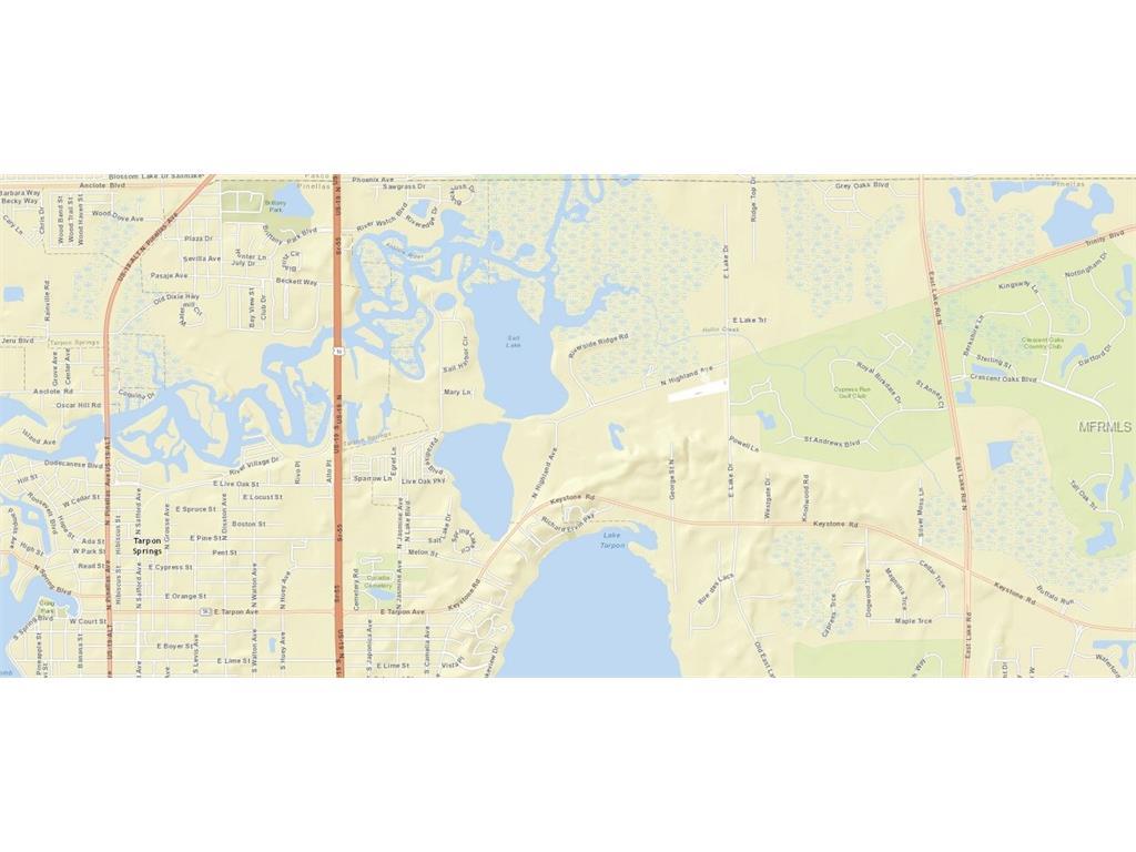 E Lake Drive, Tarpon Springs, FL 34688