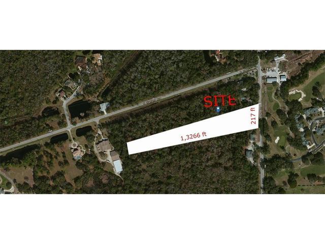 E Lake Dr, Tarpon Springs, FL 34688