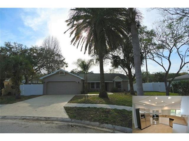 3412 Snowy Egret Ct, Palm Harbor, FL