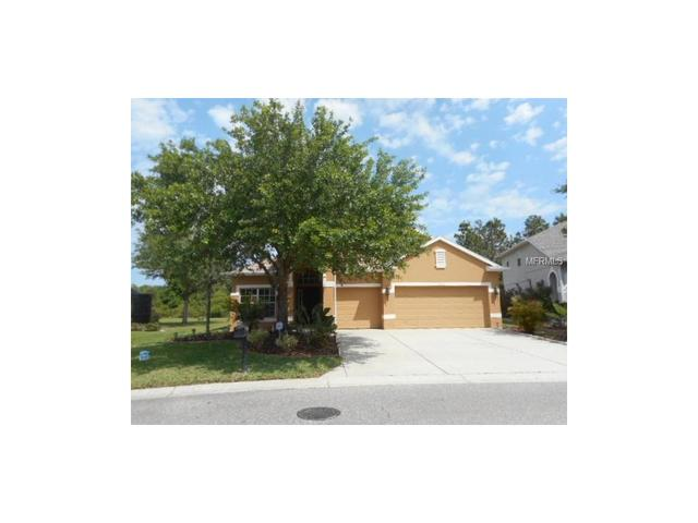 11153 Oyster Bay Cir, New Port Richey, FL