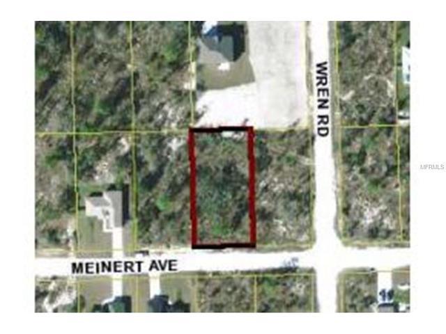 12493 Meinert Ave, Weeki Wachee, FL 34614