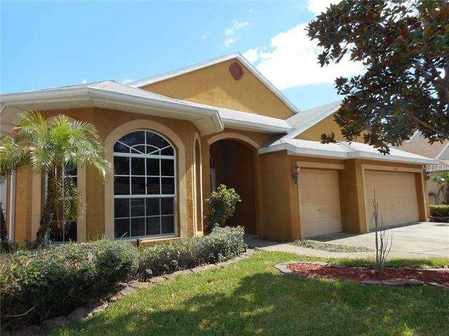 1802 Wood Brook St, Tarpon Springs, FL 34689