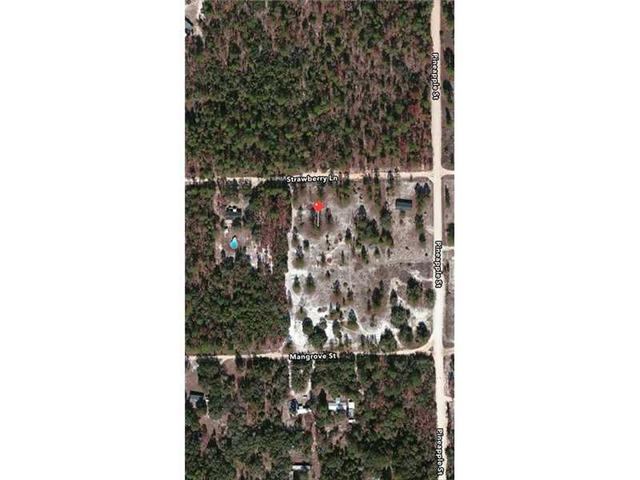 137 Strawberry Ln, Other City - In The State Of Florida, FL 32181