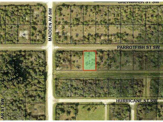 772 Parrotfish St SW, Other City - In The State Of Florida, FL 32908