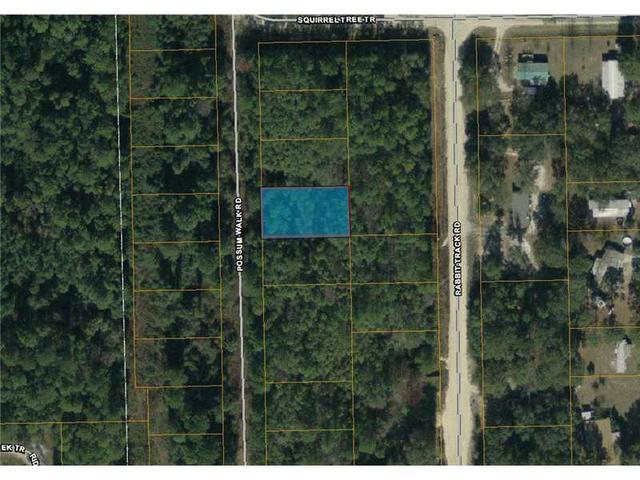 166 Possum Walk Rd, Other City - In The State Of Florida, FL 32189