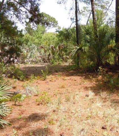 1142 Spangler Ln, Titusville, FL 32796
