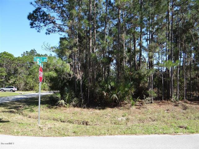 0 Tunis Rd Wildwood Rd Corner Rd, Palm Bay, FL 32908
