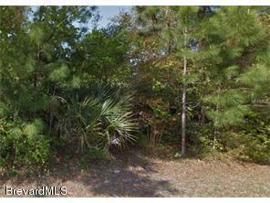 00 Radcliff Ave SE, Palm Bay, FL 32909