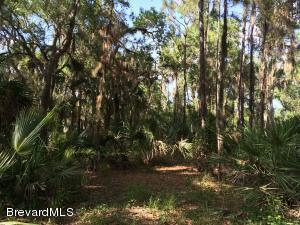 0 Freedom Rd, Mims, FL 32754