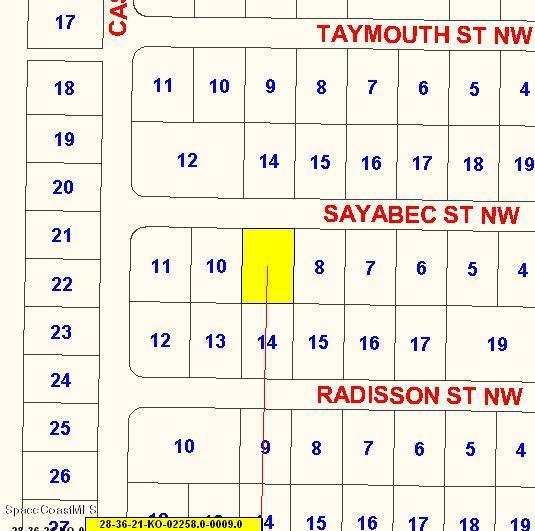 1782 Sayabec Street NW, Palm Bay, FL 32907