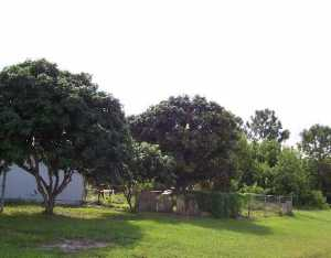 102 SW Brandon, Port Saint Lucie FL 34953