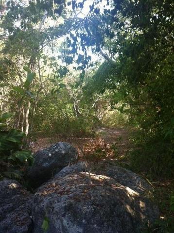 203 Antigua Rd, Key Largo, FL 33037