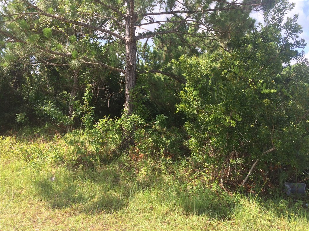 1346 Walthan St SE, Palm Bay, FL 32909