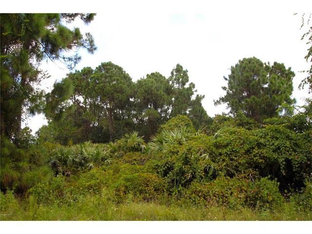 1659 Uniontown St SE, Palm Bay, FL 32909
