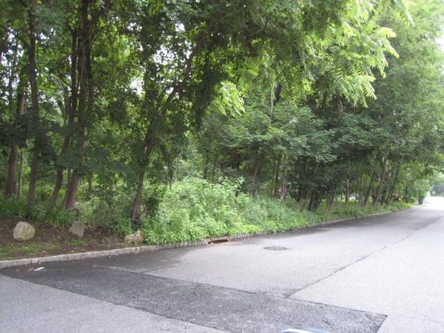 124 E Mc Clellan Ave, Livingston, NJ 07039