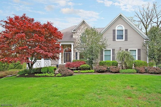 14 Apple Ln, Califon, NJ 07830