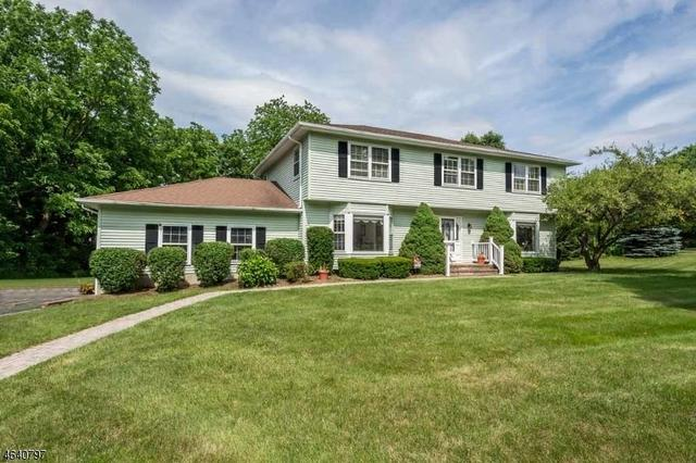 6 Patriots Way, Flanders, NJ 07836