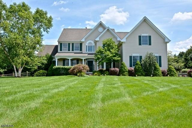 3 Old Mill Ct, Ringoes, NJ 08551