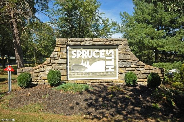1313 Spruce Hills Dr, Glen Gardner, NJ 08826