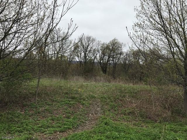 9 Meadow Ridge Rd, Columbia, NJ 07832