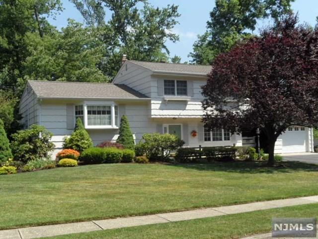 11 Pitman Pl, Wayne, NJ 07470