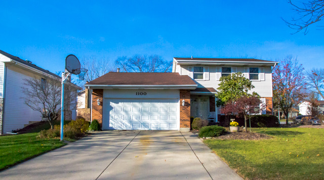 1100 Carriage Ln, Schaumburg, IL
