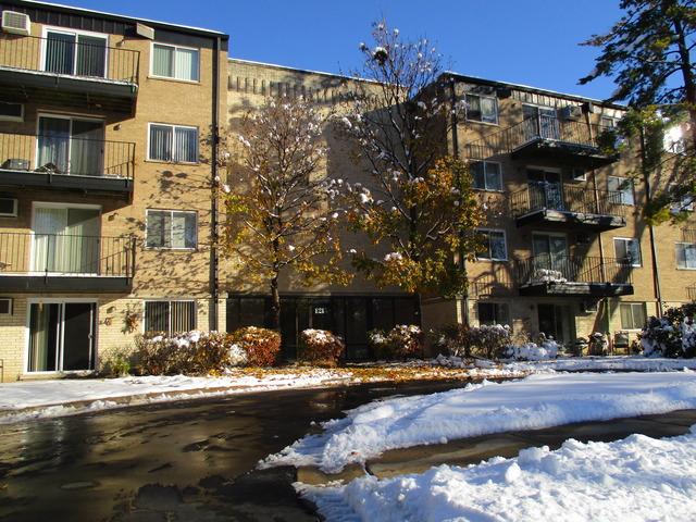 1215 N Waterman Ave #APT 1i, Arlington Heights, IL