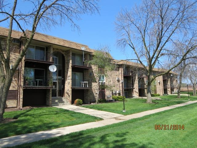 1035 Higgins Quarters Dr #APT 4-205, Hoffman Estates IL 60169
