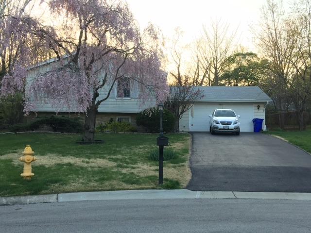 763 Ralph Ct, Wheaton, IL