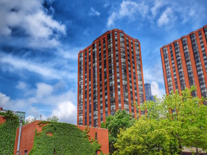 901 S Plymouth Ct #APT 1101, Chicago, IL