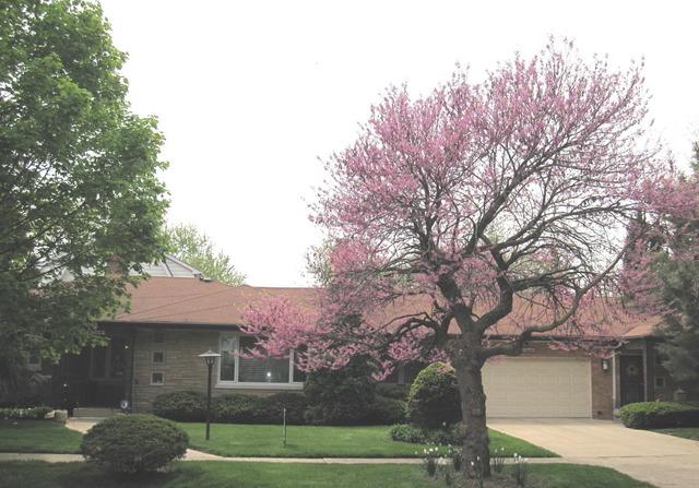 36 S Cowley Rd, Riverside, IL
