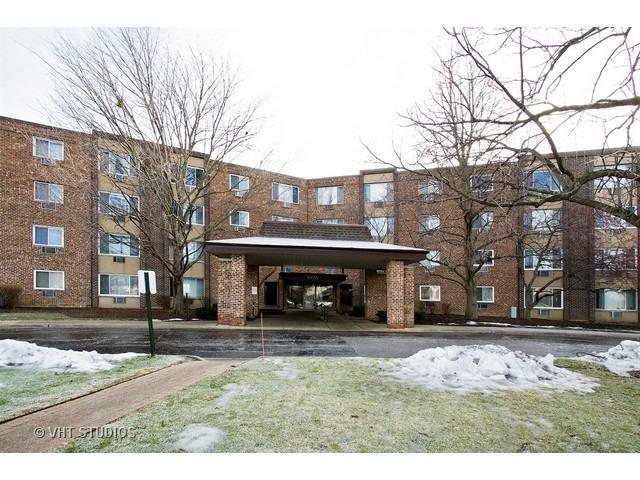 1375 Rebecca Dr #413 Hoffman Estates, IL 60169