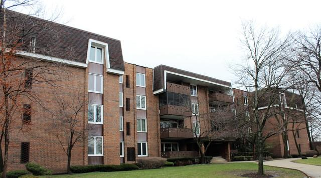 129 S Spruce Ave #204Wood Dale, IL 60191