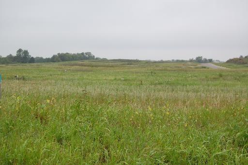 Lot 58 Meadow LaneMarengo, IL 60152