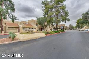 1406 W Emerald Ave #APT 125, Mesa, AZ