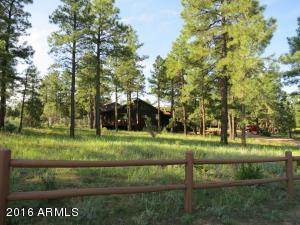 2213 Forest Park Dr, Overgaard AZ 85933
